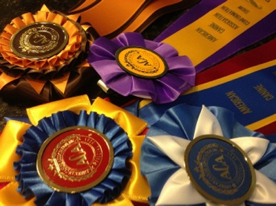 Victor Lambright dog breeder ribbons